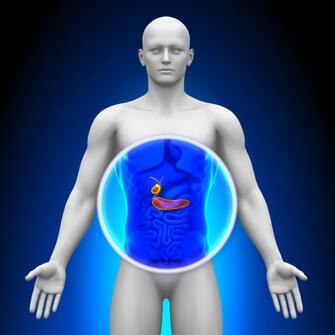 Лечение рака желчного пузыря в  Израиле Лечение рака желчного пузыря Лечение рака желчного пузыря в Ассуте GBnPNCRS