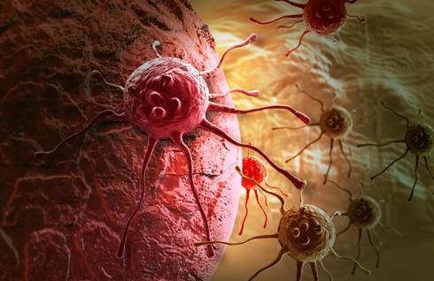 Молочнокислые бактерии предотвращают рак желудка