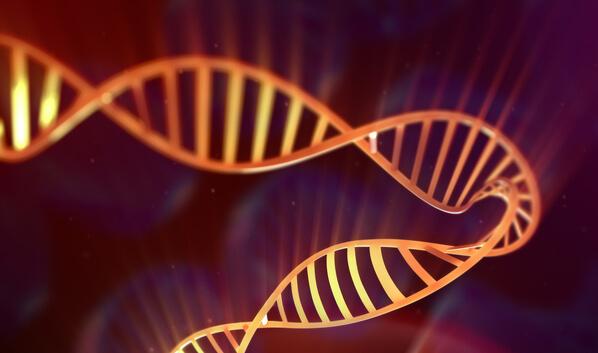 ДНК-компьютеры помогают в борьбе против вирусов