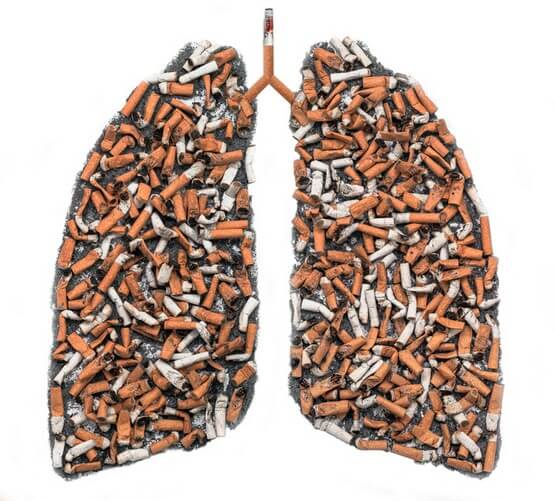 Продукты, снижающие последствия курения для организма