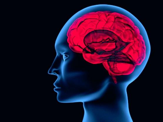 Лечение опухоли головного мозга в Израиле в клинике Ассута